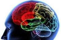 EEG BIOFEEDBACK